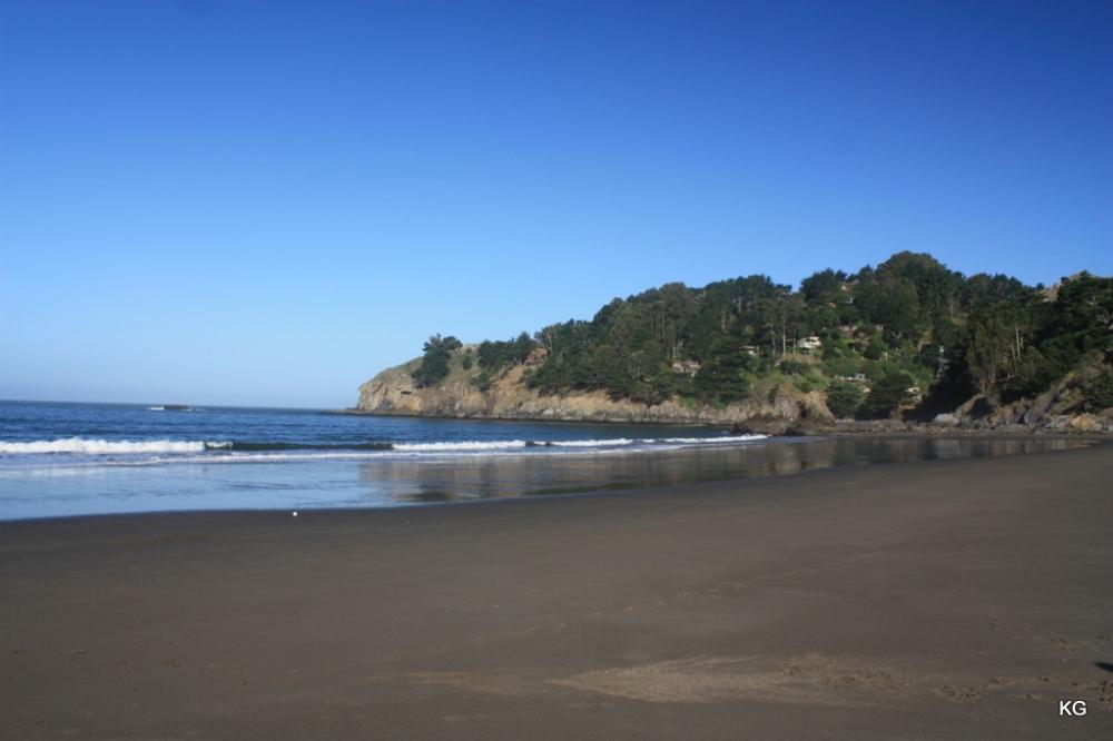 Beaches_MuirBeachUSA