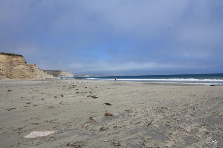 Beaches_Drake_USA