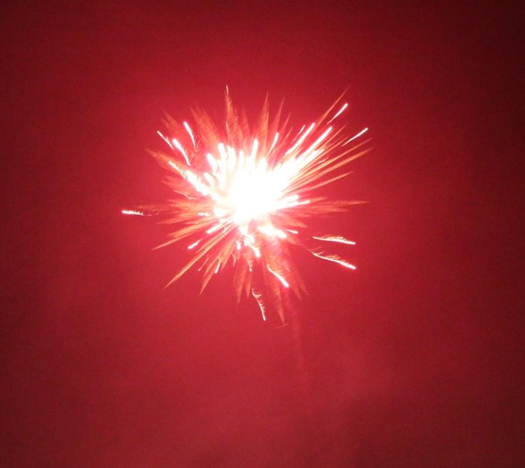 2014_diwali1