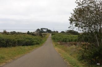 Walk towards the lighthouse